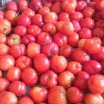 Photo of Acerola Fresh