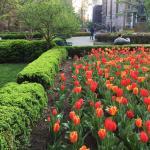 Foto de Gramercy Park Hotel