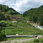 Ishizumi Rice Terraces