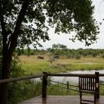 Foto de Savute Safari Lodge