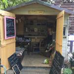 Reception/Shop