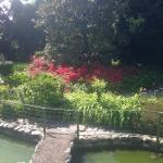 Photo de B&B Il Giardino di Iside