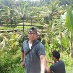 Keunikan irigasi sawah tradisional Bali