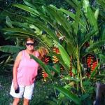 Cabanas Safari Foto