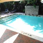 Travelers Palm Inn-billede