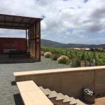 Mixtura Valle de Guadalupe
