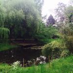 Photo de Jardin Botanique de l'université de Strasbourg