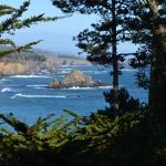 Whale Watch Inn by the Sea Foto