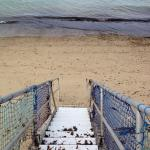 Pilgrim Sands on Long Beach Photo