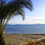 BlueSense Mar Menor
