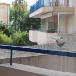 Efficacité de la barrière anti-pigeons