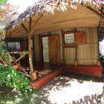 Nos bungalows (189455240)