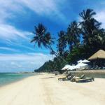 Photo de Bang Po Beach