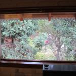 La ventana del living comedor. Hermosa vista!