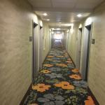 Photo de Hampton Inn and Suites Tulsa Central