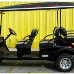Our 4 passenger cart