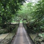 Foto de Shimiyacu Amazon Lodge