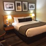 Rydges World Square Sydney Hotel Foto