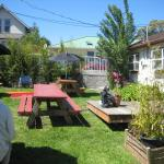 Friendly back garden yard.
