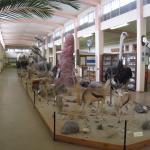 Swakopmund Museum Foto