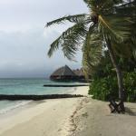 Kleine Strandbuchten, viele Palmen