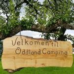 Photo of Oddland Camping