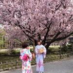 Foto de KKR Hotel Kanazawa