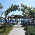 Poolbereich mit Garten