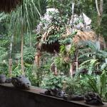 Photo of Ecolodge El Sombrero