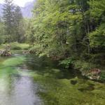 Rivière à truites à 250m