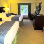 Foto di BEST WESTERN PLUS Waynesboro Inn & Suites Conference Center
