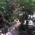 Photo of Vitrage Guesthouse