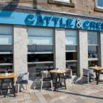 Cattle & Creel