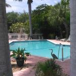 Anna Maria Motel & Resort Apartments Photo