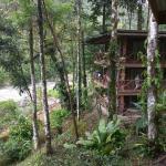 Rios Tropicales Lodge Photo