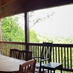 Foto de Above the Rest Cabins