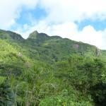 Vue sur le Morne Seychellois