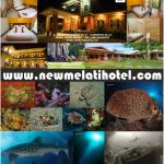 Photo of New Melati Hotel