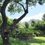Una excelente opción para descansar en Tepoztlán. Limpio, personal amable, comida de buena calid
