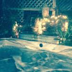 Moonlight Suite's Private Grotto Hot Tub