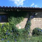 Foto de Agriturismo Pulicaro