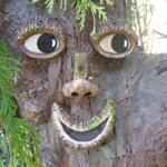 Faces in the Trees