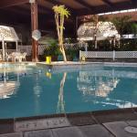 Foto de Sturbridge Host Hotel & Conference Center