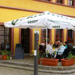 Im Herzen der historischen Torgauer Altstadt. Sie Sollen hier einfühlsam umsorgt sein.