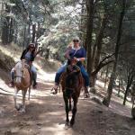 Paseo a caballo por la marqueza