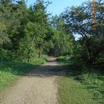 Foto de Irchester Country Park