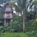 Photo of Kampoeng Padi Boutique Villa