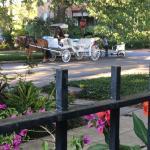 The Olde Savannah Inn Foto
