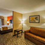 Comfort Suites Spartanburg