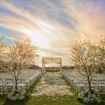 Ocean wedding views at The St. Regis Monarch Beach Resort